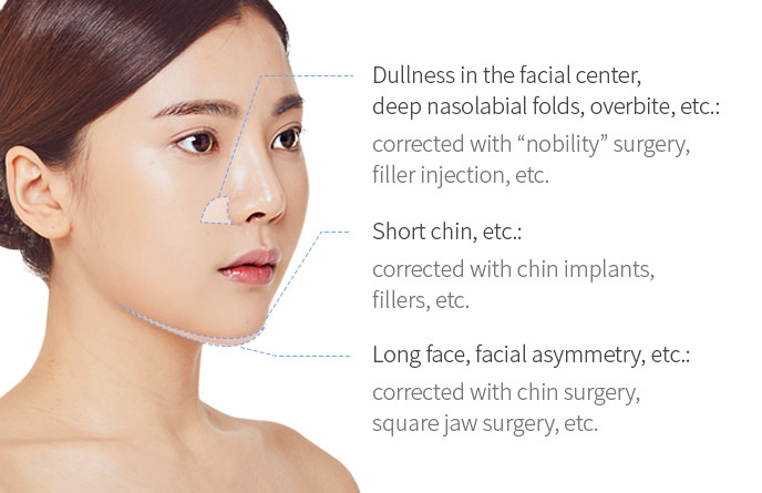"Dullness in the facial center, deep nasolabial folds, overbite, etc.: corrected with ""nobility"" surgery, filler injection, etc. / Short chin, etc.: corrected with chin implants, fillers, etc. / Long face, facial asymmetry, etc.:corrected with chin surgery, square jaw surgery, etc."